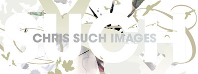 Chris Such Images CD Packaging Artwork